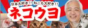 blog_neko-mini.jpg