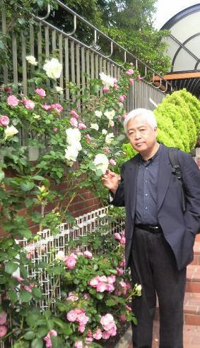 rose47.jpg