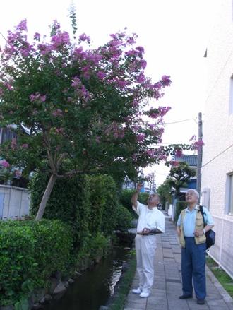 sunazawa-edo1.jpg