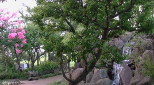 sunazawa-edo5.jpg